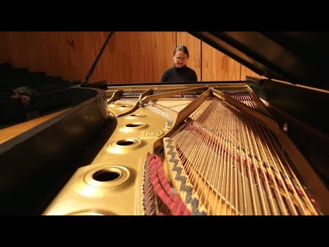 Ann DuHamel, Pianist Mp3