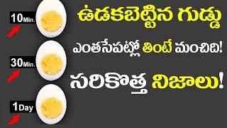 గుడ్డు తినే ప్రతి ఒక్కరు తప్పక తెలిసి కోవలసిన నిజాలు  ||Shocking Benefits OF Boiled Eggs
