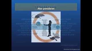 Download Video Info Penyakit Leptospirosis MP3 3GP MP4