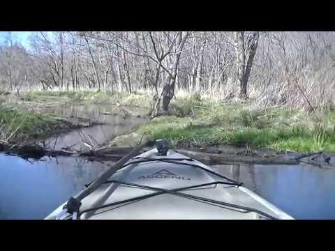 Kayaking Easter Weekend