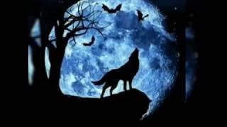 Nineball - aku lah serigala lagu