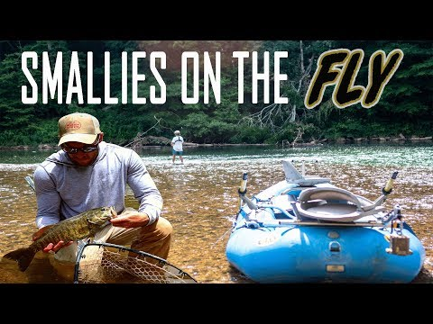 Smallies On The Fly (fly Fishing For Big Smallmouth Bass)