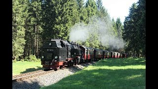 DDE085241 Steam locomotive 99-7245 blows the horn, what a fantastic echo in the Harz forest.