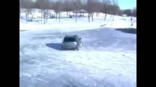 funny dog drifting