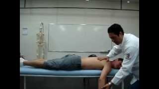 Prof. Thiago Fukuda - Ombro (Discinese escapular)