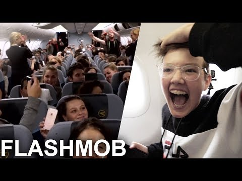 FLASHMOB im Flugzeug! ✈️ (lustigster Flug ever)