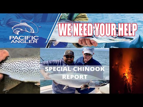 Pacific Angler Vancouver Fishing Report - April 17th, 2020 Chinook Closure Update & Call To Action