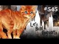 War KRUMMBEIN die Katze von Lily & James Potter?! | Let's Build Hogwarts #545