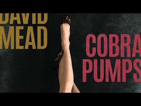 DAVID MEAD- VANESSA (AUDIO from COBRA PUMPS) Mp3