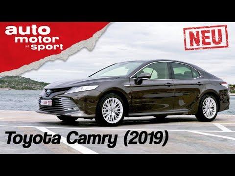 Toyota Camry Hybrid (2019):  Gelungenes Comeback? - Fahrbericht/Review   auto motor & sport