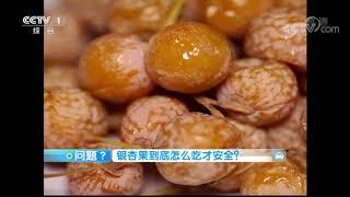《生活提示》 20191016 吃对银杏果 不中毒!| CCTV