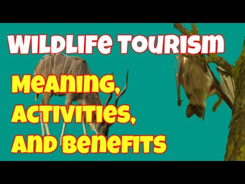Wildlife Tourism / Meaning,  Activities and Benefits of Wildlife Tourism / Ecotourism Journey