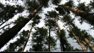 Боровской район Харьковской области(Боровая., 2013-02-11T07:11:28.000Z)