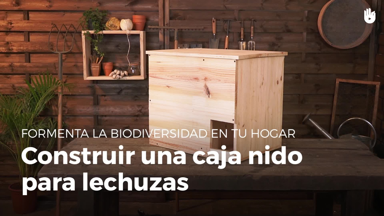 aprende a construir una caja nido para lechuzas construye refugios para animales youtube. Black Bedroom Furniture Sets. Home Design Ideas