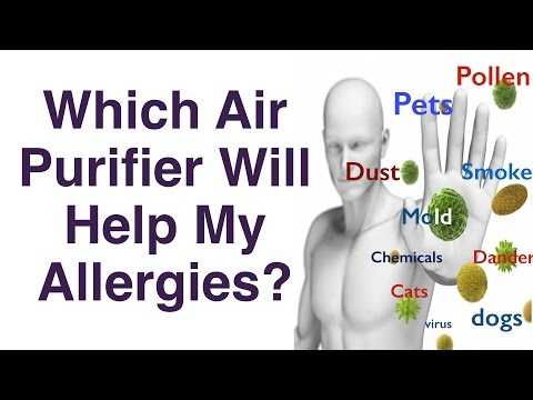 Best Air Purifier For Allergies – To Pets, Cats, Dogs, etc.