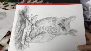 Животные - мои рисунки. Учусь рисовать