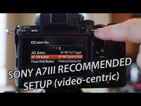 How to set up the Sony A7iii - Recommended Settings, tips