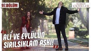 Ali Ve Eylül'ün Sırılsıklam Aşkı! - Kırgın Çiçekle