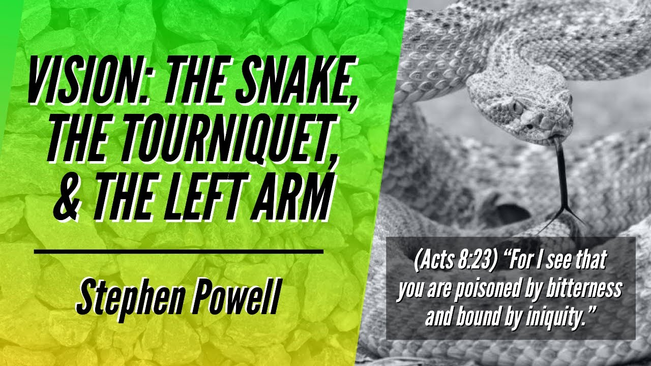 VISION: THE SNAKE, THE TOURNIQUET, & THE LEFT ARM