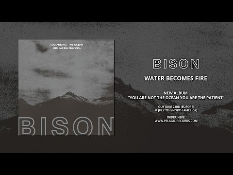 BISON - Water Becomes Fire