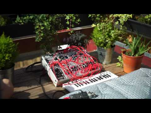 Modular Meditation: Generative chimes with Mutable Instruments Rings