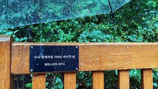 (4K) Walking in Heavy Rain   S…