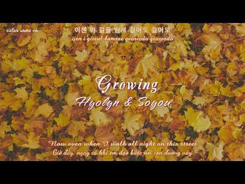 [VIETSUB+ENGSUB[ Growing (꽃이 핀다) -  Hyolyn & Soyou (cover)
