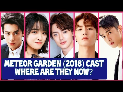 Meteor Garden 2018 Cast: What Are They Up To Now? Updated News & Upcoming Dramas