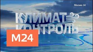 """Климат-контроль"": в Москве немного потеплело - Москва 24"