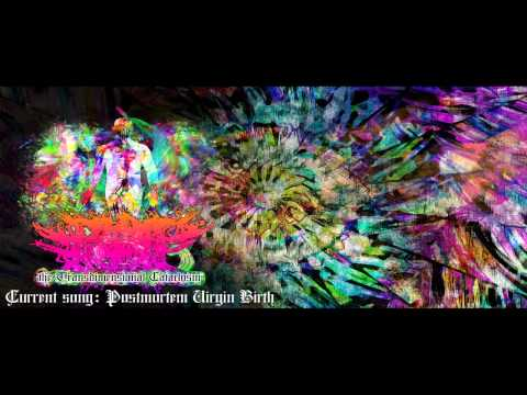 Deformed Elephant Surgery - The Transdimensional Cataclysm (2012) [full album HQ][free download]