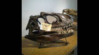 A Trip to the Fossil Discovery Center of Madera County, CA.
