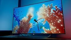 Philips OLED 55 POS9002 mit Ambilight im Test, Bildvergleich mit LG B7