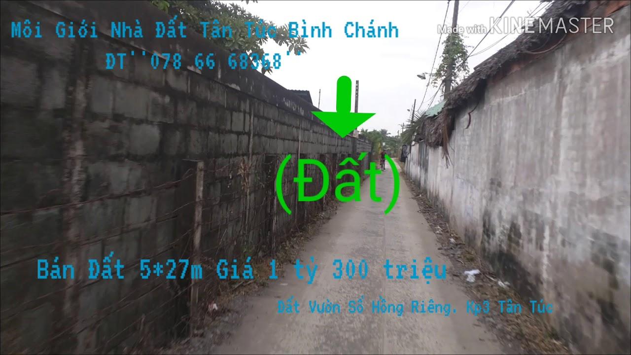 Bán Đất Thị Trấn Tân Túc Huyện Bình Chánh giá rẻ 1,3 tỷ. ĐT''0786'668'368''