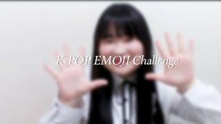 [바이샤] K-POP EMOJI Challenge에 도전해보았다