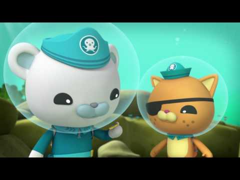 Octonauts and the Scared Sperm Whale - Full Episode