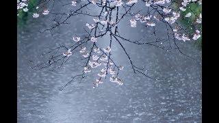 村下孝蔵 - 春雨