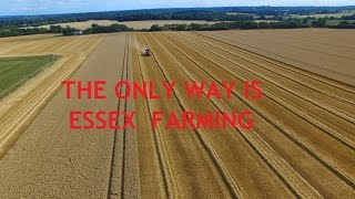 Gaymers Farms Essex DJI Phantom & Inspire Harvest Time