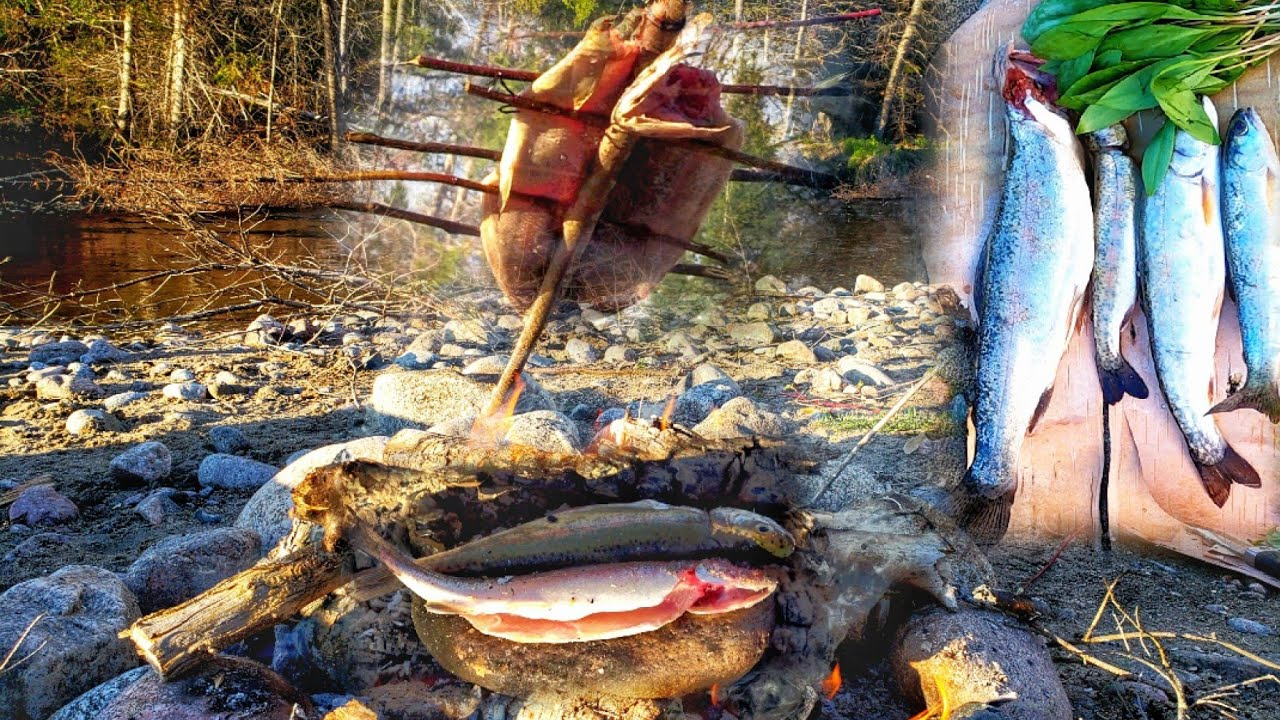 CATCH N' COOK Wild Trout ! Cookout on Rock & Stick - Beautiful Nature