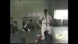 Kyokushin vs Taikiken. Shokei Matsui vs Machio Shimada