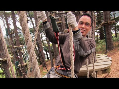 Adrenalin Forest - Wellington - Course 4 | High Ropes & Obstacle Course | Flying Foxes | New Zealand
