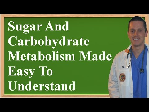 Sugar And Carbohydrate Metabolism Made Easy To Understand [Updated Version]