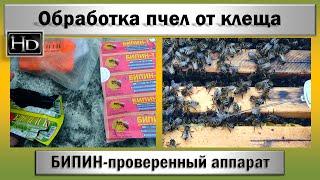пчеловодство  Обработка ПЧЕЛ от клеща  БИПИН - проверенный  препарат