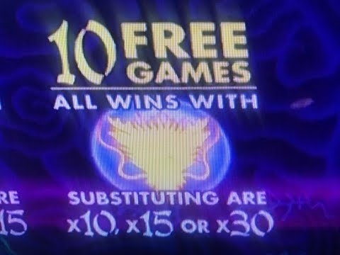 After Free Play Super Big Win (10/28 Part2)★5 Dragons, Timber Wolf Deluxe, Fortune king Deluxe, 2c