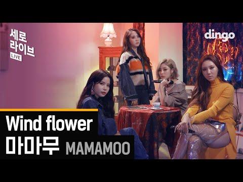 이게 라이브라고? 음색깡패 마마무의 Wind Flower 라이브![세로라이브]