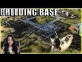In Depth Breeding Base Tour (Island) - Mega Tribe Survival - Official PvP - Ark: Survival Evolved