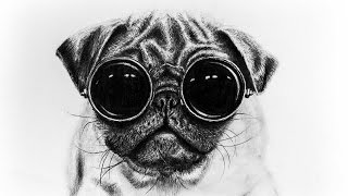 Speed Drawing : Pug With Glasses