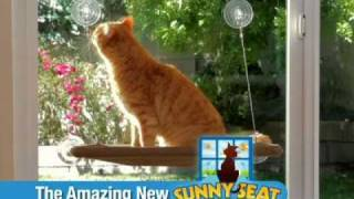 The Amazing Sunny Seat Cat Bed! As Seen On Tv
