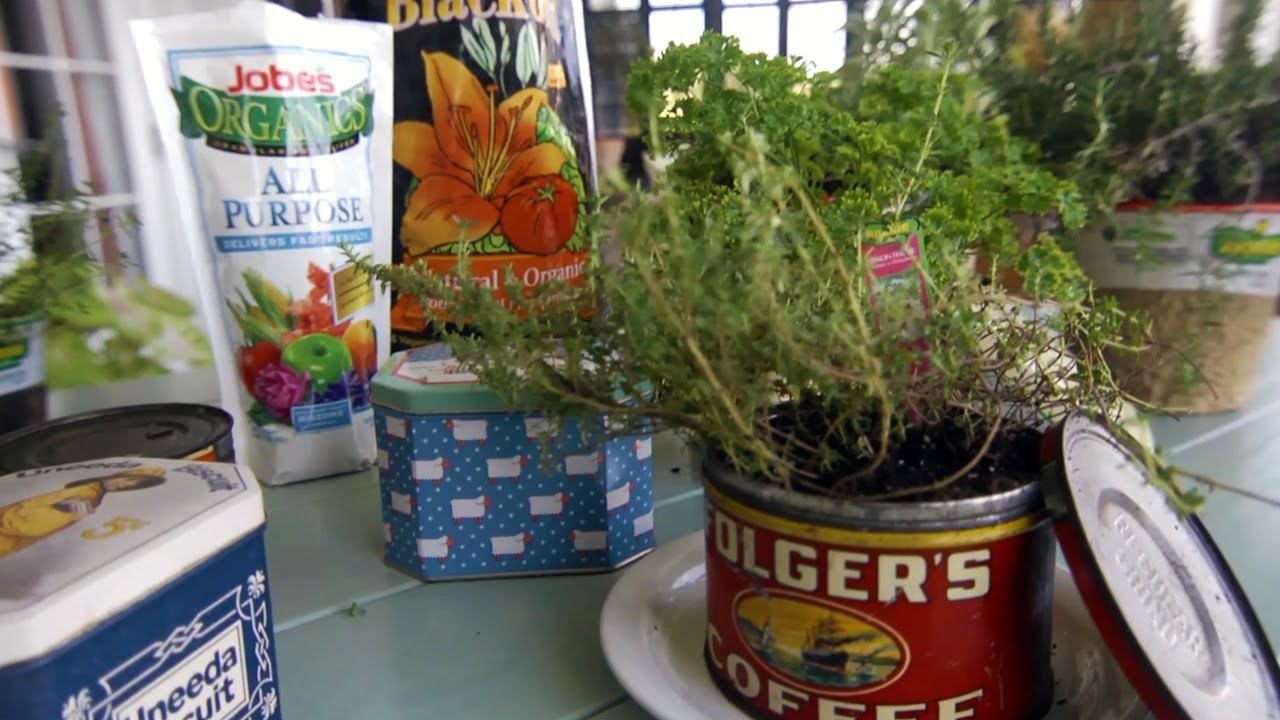 How To Plant Herbs In Tin Containers At Home With P Allen Smith Youtube