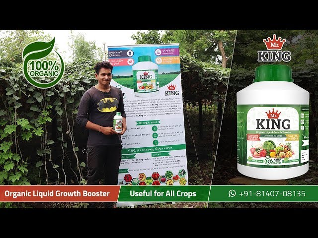 Mr. King – 100% Organic Liquid Growth Booster | Extremely Beneficial for Pointed Gourd (Parval)