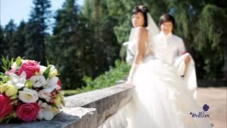 Свадьба Евгения и Алины
